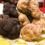 [:ru]Новость для городских садоводов Парижа: дикие грибы теперь можно вырастить на крыше [:]